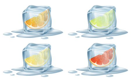 refrigerate: Ice cubes with citrus fruits. Vector illustration.