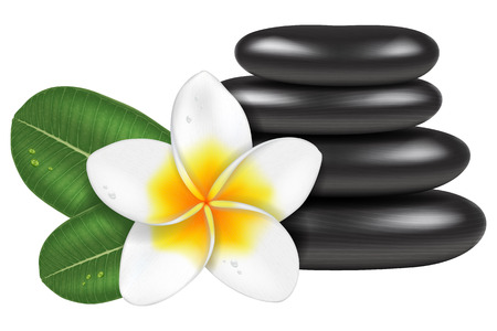Photo-realistic vector illustration of spa stones and a frangipani flower with leaves. Illustration