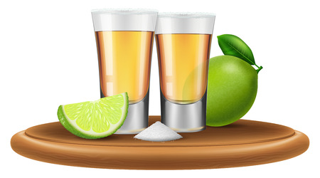 Tequila with lime and salt. Vector illustration. Vector Illustration