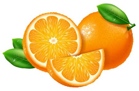 오렌지, 조각 및 전체. 벡터 일러스트 레이 션.