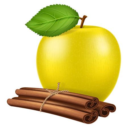 apple cinnamon: Apple and cinnamon. Vector illustration.