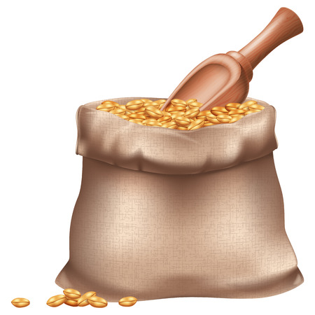 Sack of wheat grain and wooden spoon. Vector illustration.