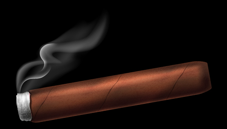 Cigar vector illustration.