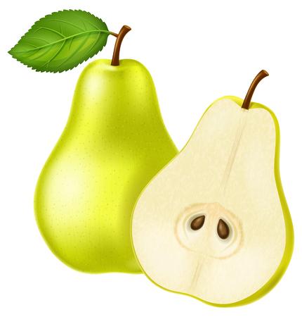 Green pear illustration