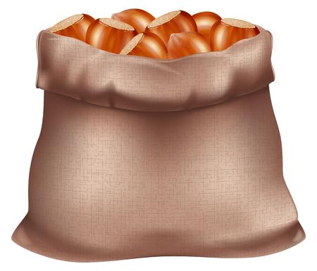 Sack of hazelnuts. Vector illustration.