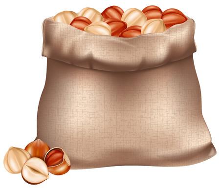 Sack of hazelnuts illustration isolated on white Illustration