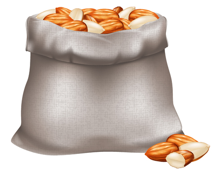 Sack of almond nuts. Vector illustration.