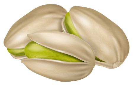 Pistachios. Vector illustration.