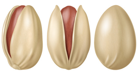 Pink pistachios. Vector illustration. Ilustrace