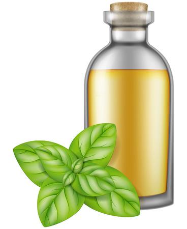Flask of oregano oil. Vector illustration.