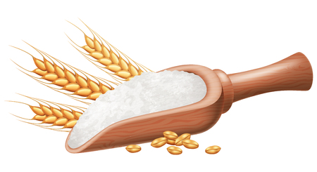 Wooden spoon with flour and wheat grain. Vector illustration. Illustration