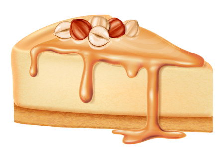 Cheesecake with nuts and caramel sauce. Vector illustration.