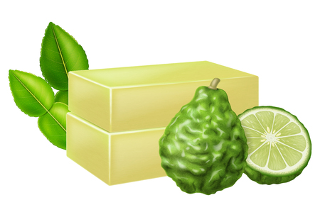 Natural handmade soap with kaffir lime. Vector illustration. Illustration