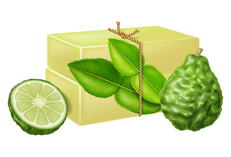 Natural handmade soap with kaffir lime. Vector illustration. Иллюстрация