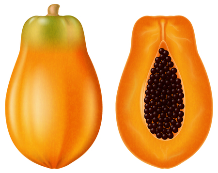 Ripe papaya, half and whole. Vector illustration. Иллюстрация