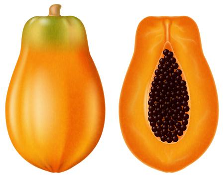 Ripe papaya, half and whole. Vector illustration. Illustration