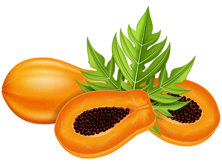 Ripe papaya, half and whole with green leaf. Vector illustration.