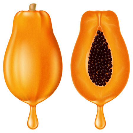 Ripe papaya with juice drop. Vector illustration.