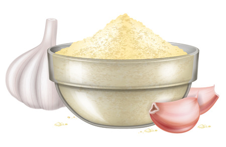 A glass bowl with garlic powder and garlic cloves. Vector illustration.