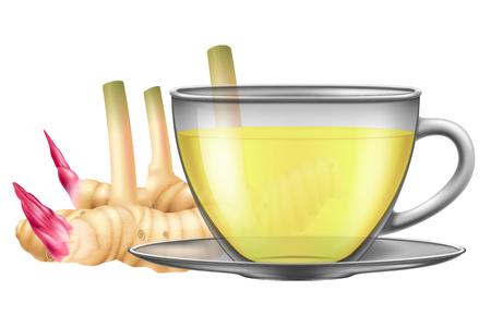 A cup of hot galangal tea. Vector illustration.