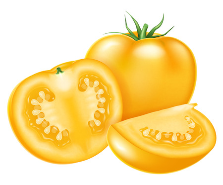 Fresh ripe tomatoes. Vector illustration.