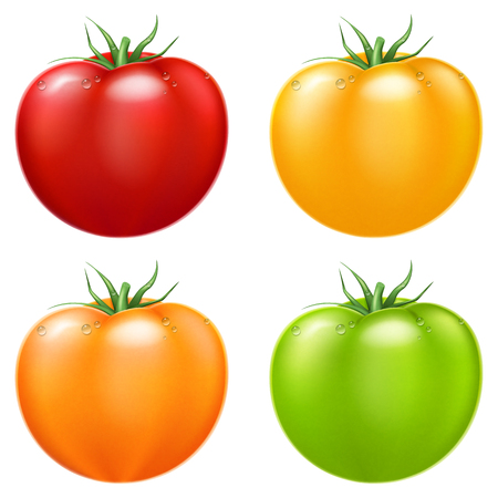 Red, yellow, orange and green. Vector illustration, isolated on white. Иллюстрация