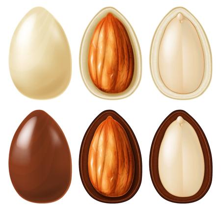 Mandel-Nuss-Dragees in dunkler und weißer Schokolade. Vektor-Illustration.