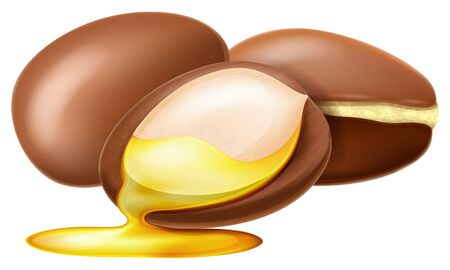 Argan nut with oil drop. Vector illustration.