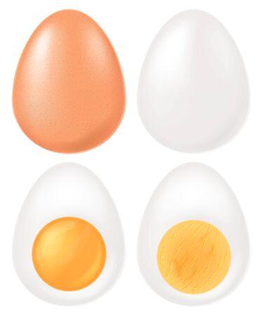 Set of boiled eggs. Vector illustration. Vetores