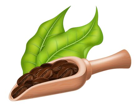 A wooden spoon full of coffee beans and green leaves. Vector illustration.