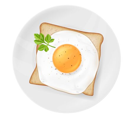 Fried egg on a toast, served on a white plate, garnished with parsley leaf. Vector illustration.