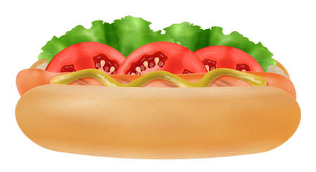 Hot dog with mustard, lettuce and red tomatoes isolated on white background. Photo-realistic vector illustration.