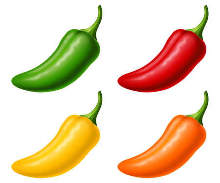 Set of jalapeño in four colors isolated on white background. Photo-realistic vector illustration.