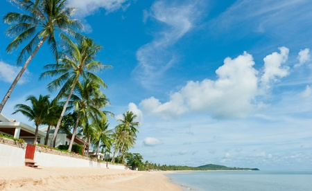 Beautiful house with palm trees on the beach photo