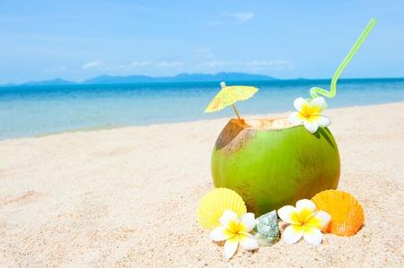 Plážové oceánu s palmami a a koktejl Reklamní fotografie