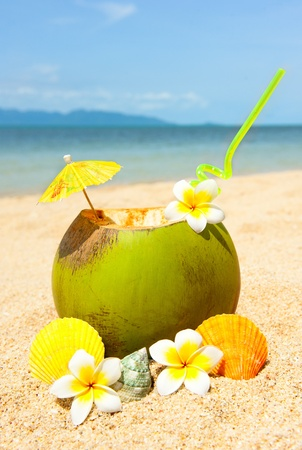fruit in water: Ocean beach and and coctail