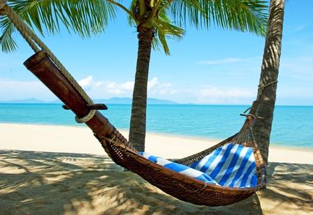 hamaca: Hamaca vacía entre palmeras en la playa de arena