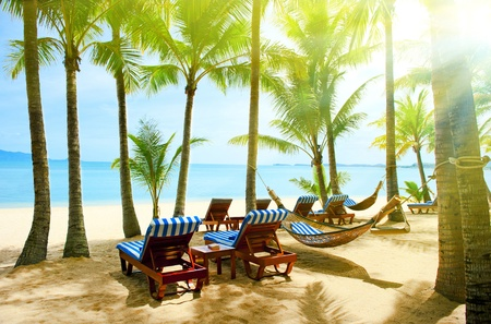 Holidays. Empty hammock between beautiful palm trees
