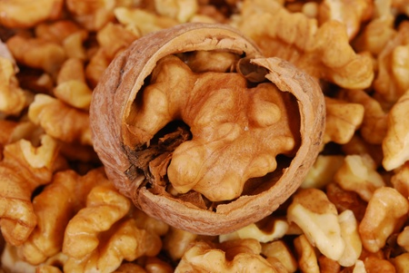 hardiness: Food. Cracked circassian nuts as background texture Stock Photo