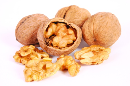 hardiness: Walnuts isolated on the white background