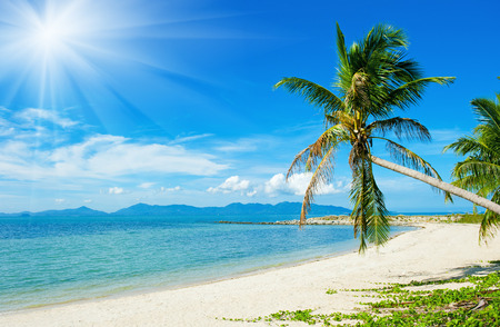 Beautiful Tropical beach vacation background photo