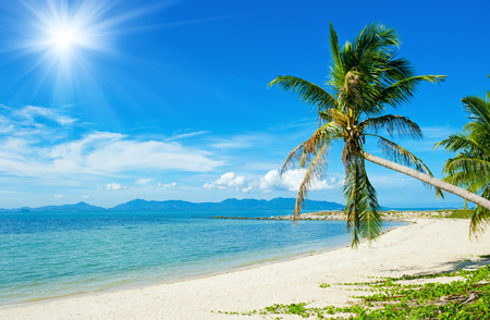 Beautiful Tropical beach vacation background photo