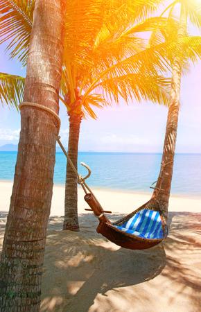 puttering: Empty hammock between palms trees at sandy beach