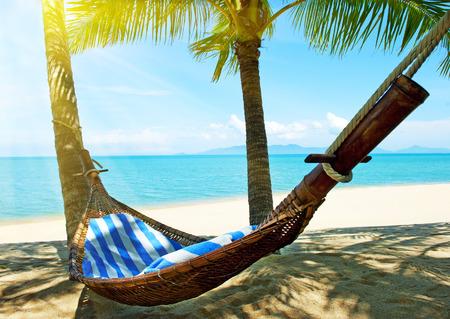 riviera maya: Empty hammock between palm trees on tropical beach Stock Photo
