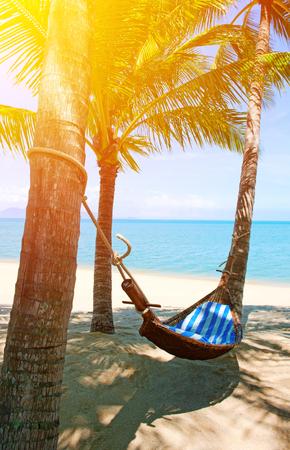 hammock: Hamaca vac�a entre las palmeras en la playa de arena
