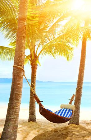 varkala: Empty hammock between two palms
