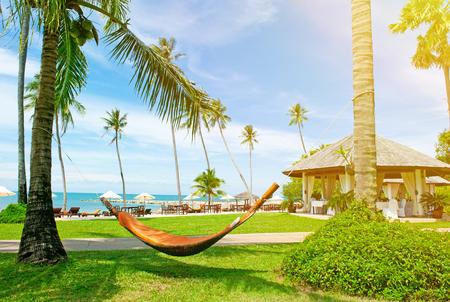 riviera maya: Empty hammock between palms trees at sandy beach