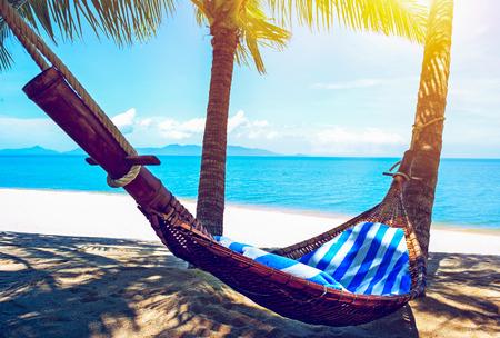 hammock: Empty hammock between palms trees. Vacation concept