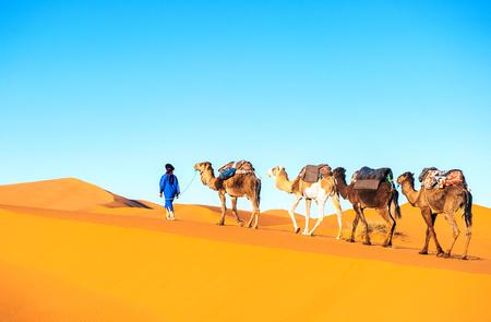 Caravana de camellos atravesando las dunas de arena en el desierto del Sáhara, Marruecos.