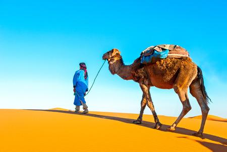 Caravan van de kameel op de Sahara. Afrika, Marokko